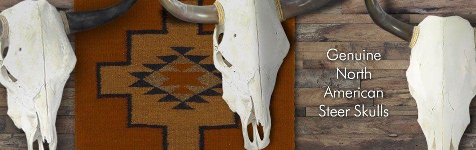 Buy Real Cow Skulls Genuine Bull Horns