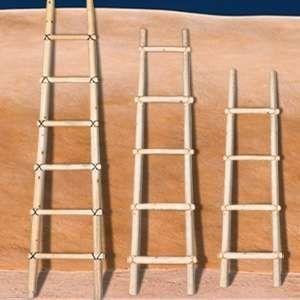 Kiva Log Ladders